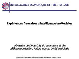 Expériences françaises d'intelligence territoriales