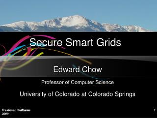 Secure Smart Grids