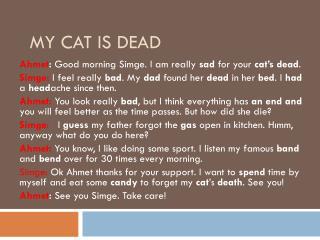 My Cat  Is  Dead