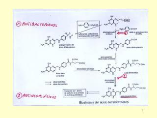 1b) inhibidores de la bios�ntesis de purinas y