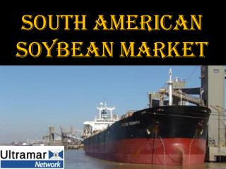 SOUTH AMERICAN SOYBEAN MARKET