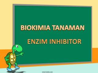 BIOKIMIA TANAMAN
