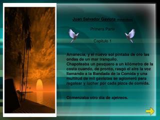 Juan Salvador Gaviota  (Richard Bach) Primera Parte Capitulo 1