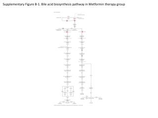 Supplementary Figure B-1. Bile acid biosynthesis pathway in Metformin therapy group