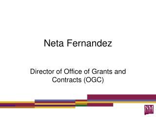 Neta Fernandez
