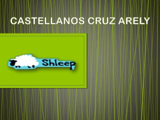 CASTELLANOS CRUZ ARELY