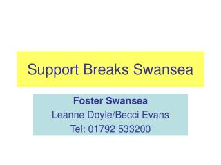 Support Breaks Swansea