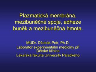 Plazmatická membrána, mezibuněčné spoje, adheze buněk a mezibuněčná hmota.