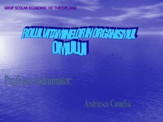 GRUP SCOLAR ECONOMIC DE TURISM, IASI