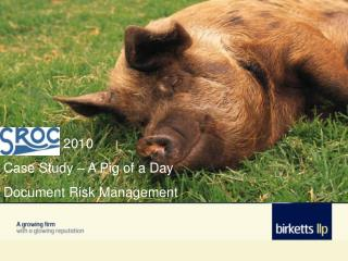 2010   Case Study – A Pig of a Day  Document Risk Management