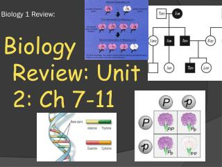 Biology 1 Review: