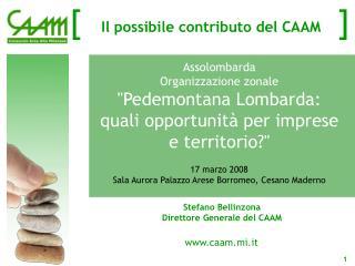 Il possibile contributo del CAAM