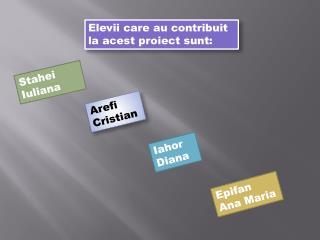 Elevii  care au  contribuit  la  acest proiect sunt :