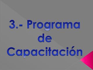 3.- Programa de Capacitación