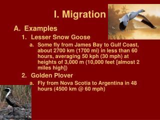 I. Migration