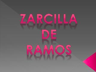 ZARCILLA  DE  RAMOS