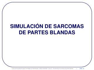 SIMULACIÓN DE SARCOMAS DE PARTES BLANDAS