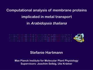 Computational analysis of membrane proteins implicated in metal transport in  Arabidopsis thaliana