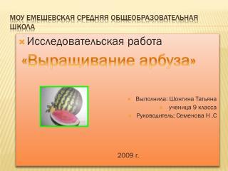 МОУ  Емешевская  средняя общеобразовательная школа