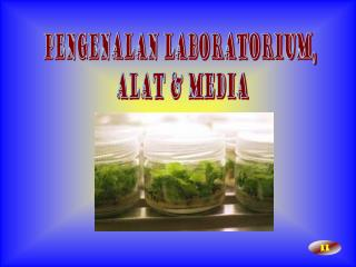 Pengenalan laboratorium,  alat & media
