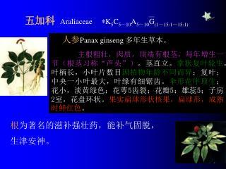 五加科   Araliaceae     * K 5 C 5~10 A 5~10 G (1~15:1~15:1)