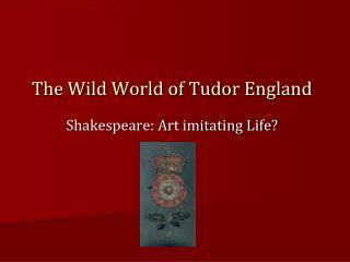 The Wild World of Tudor England