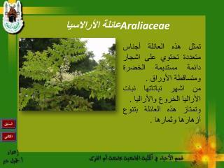 عائلة الأرالاسيا  Araliaceae