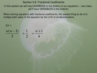 In this section we will have NUMBERS in the bottom of our equations – next class