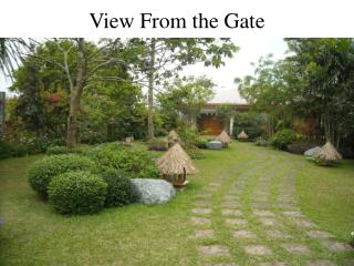 View From the Gate