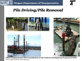 Pile Driving/Pile Removal