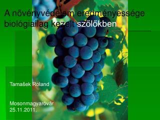 Tamašek Roland Mosonmagyaróvár 25.11.2011.