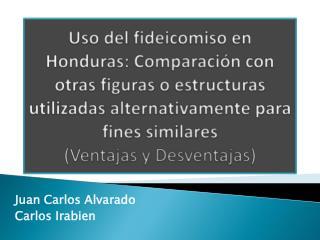 Juan Carlos Alvarado Carlos  Irabien