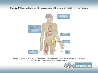 Figure 2  Main effects of GH replacement therapy in adult GH deficiency