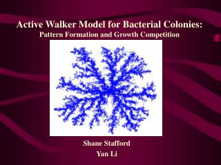 Active Walker Model for Bacterial Colonies: Pattern Formation and Growth Competition
