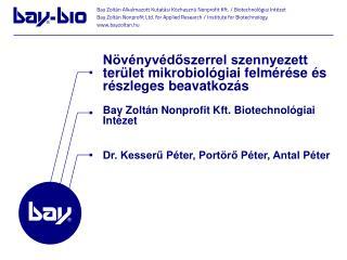 Bay Zoltán Nonprofit Kft. Biotechnológiai Intézet