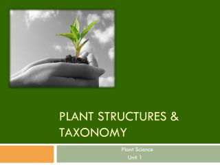 Plant Structures & Taxonomy