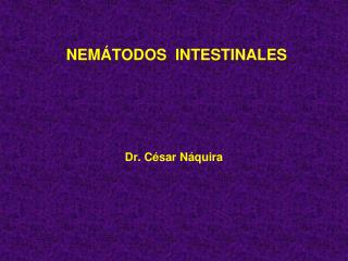 NEM � TODOS   INTESTINALES