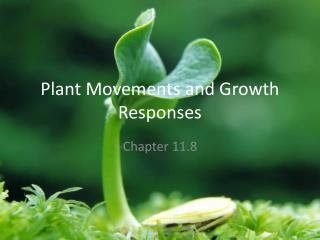 Plant Movements and Growth Responses