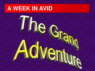 A WEEK IN AVID