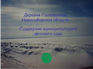 Деревня Половинное - Новосибирская область -