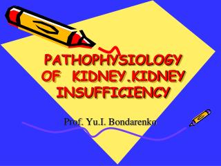PATHOPHYSIOLOGY OF  KIDNEY.KIDNEY INSUFFICIENCY
