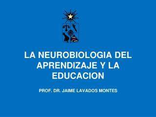 LA NEUROBIOLOGIA DEL APRENDIZAJE Y LA EDUCACION