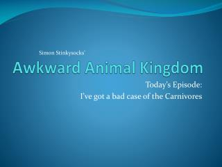 Awkward Animal Kingdom