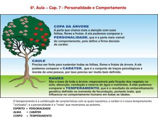 6ª. Aula – Cap. 7 - Personalidade e Comportamento