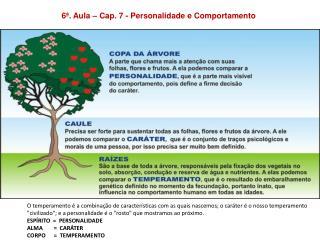 6�. Aula � Cap. 7 - Personalidade e Comportamento