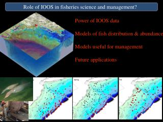 Role of IOOS in fisheries science and management?