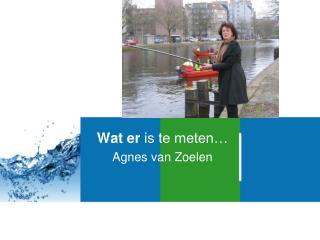 Wat er  is te meten… Agnes van Zoelen