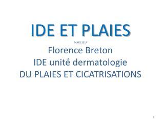 IDE ET PLAIES  MARS 2014 Florence Breton IDE unité dermatologie DU PLAIES ET CICATRISATIONS