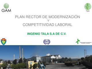PLAN RECTOR DE MODERNIZACIÓN   Y COMPETITIVIDAD LABORAL