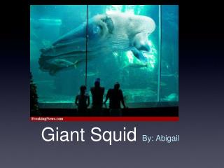 Giant Squid By: Abigail